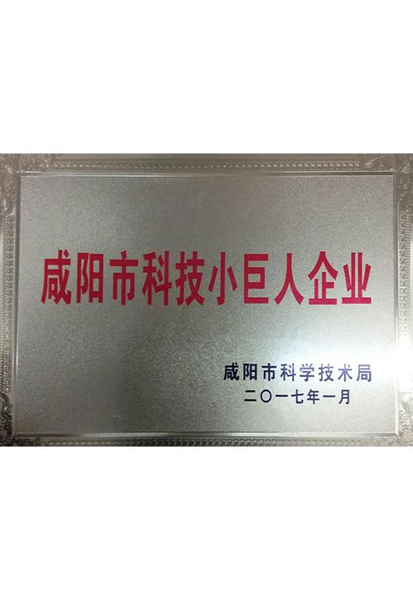 咸阳市科技小巨人企业